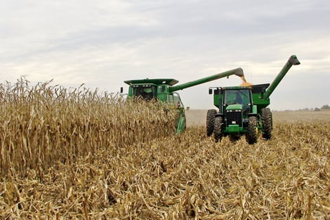 late harvest midwestern1 Primary Farm Subsidies Slashed For Years to Come