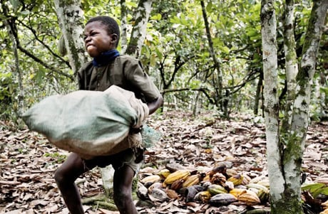 Cocoa Child Laborer Candy Bars and Child Slaves   One of the World's Best Kept Secrets