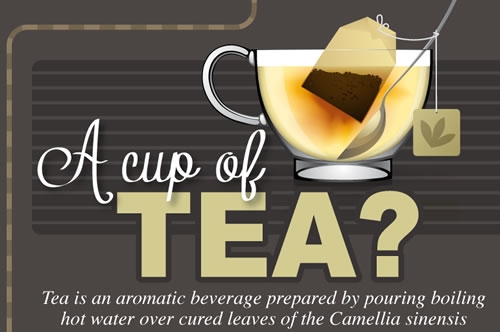 All About Tea Infographic A Cup of Tea? All About Tea (Infographic)